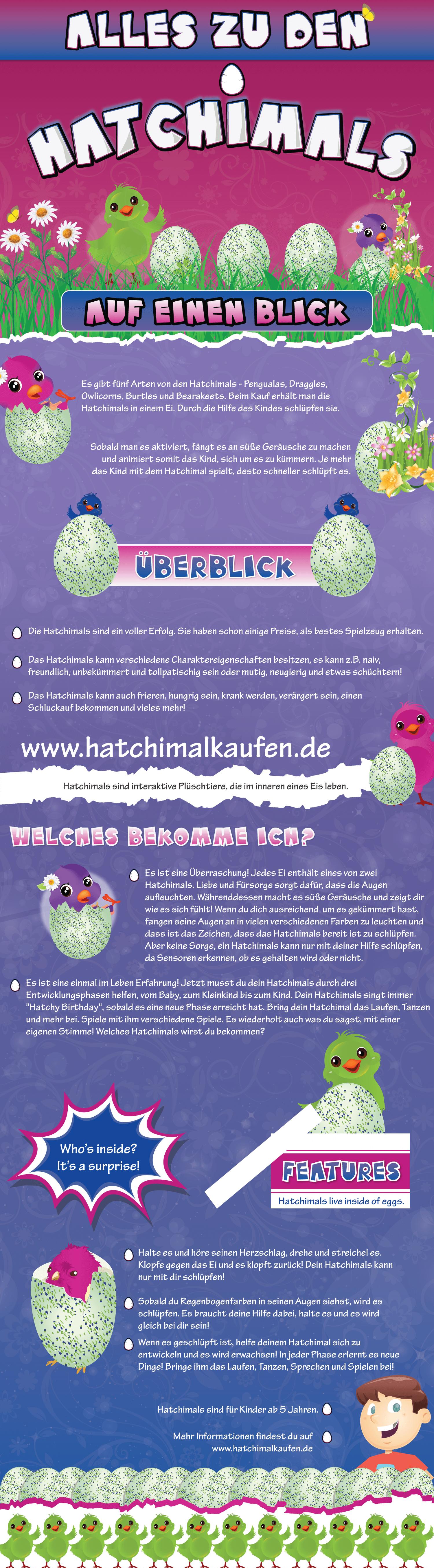 Hatchimals Infographic